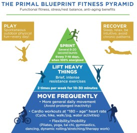 Primal fitness diagram